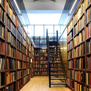 Библиотеки Буреи